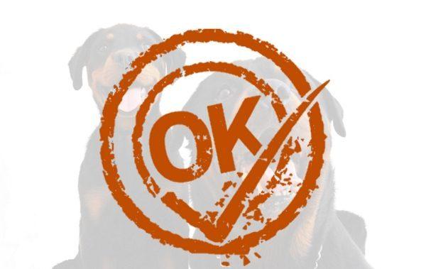 Keurmerk voor hondentrainers