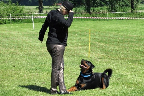 dog dance Rottweiler