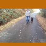 Roedelmethode voor opgefokte Rottweiler doet wonderen!