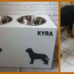 Hobbies: Rottweilers en klussen!