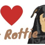 I Love My Rottie