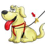 Geef een Gele Hond meer ruimte