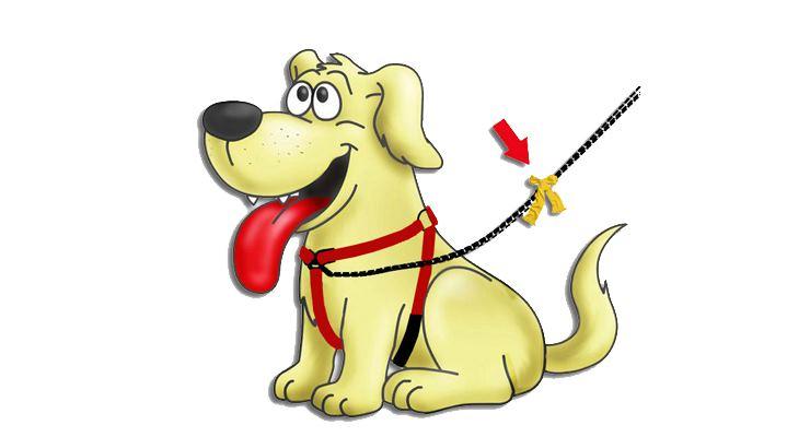 Gele Hond
