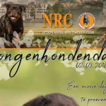 Rottweiler jonge hondendag op 2 september