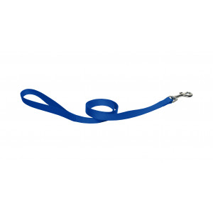 Nylon Hondenriem Blauw 120 cm x 10 mm